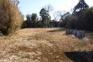 長生村一松 206坪 緑豊かな静かな環境  値下げ!の画像1