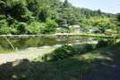 千葉県長生郡睦沢町大上 釣り堀(ヘラブナ)売ります!営業中。の画像1