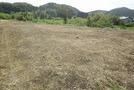 いすみ市高谷 114坪の敷地 自然豊か 陽当り良好の画像3