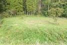長生郡睦沢町大上 自然を満喫 靜かな環境の売地(768.65坪)の画像4