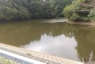 長生郡睦沢町大上 自然を満喫 靜かな環境の売地(768.65坪)の画像11