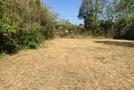 千葉県長生村一松 206坪 緑豊かな静かな環境  の画像6