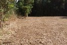 千葉県長生村一松 211坪 緑豊かな静かな環境  の画像